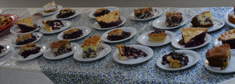 Blueberry-Desserts